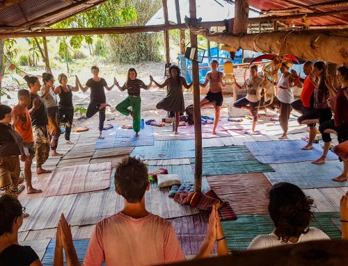 The strength of a yoga tree forest